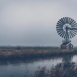 Oud hollandse glorie