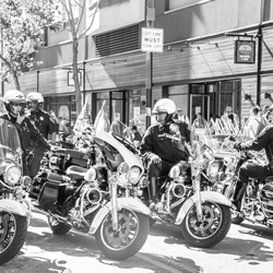San Francisco Police Motorcycles