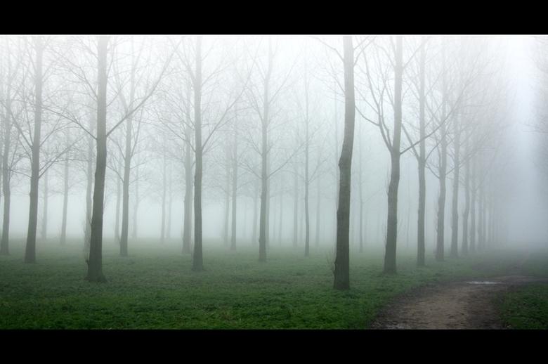 Mist - mist in Hitland