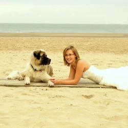 doggie love!