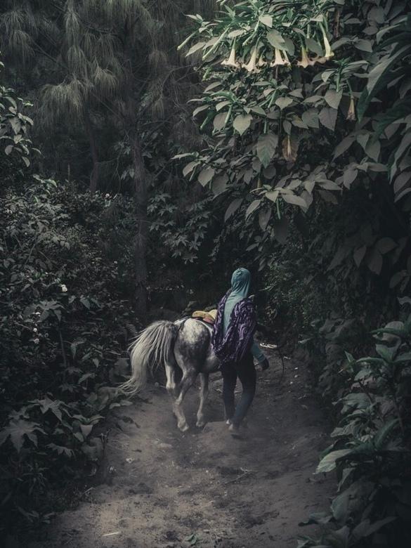 Local people in Oost java - Deze foto is genomen in de omgeving van mount Bromo een bekende vulkaan in Indonesië op het eiland Java, de lokale mensen