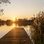 Haarlemmermeerse bos 10-11-19 (26)