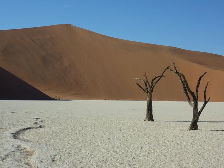 Deadvlei, Namibie - De blauwe lucht, de rode duinen, de donkere, dode bomen en de uitgedroogde, witte ondergrond. What's not to love?
