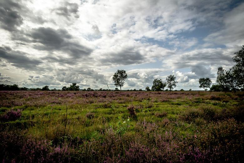 Heide landschap tussen Garderen en Harderwijk met Hollandse wolkenlucht