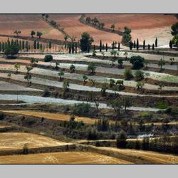 Alicantijns Landschap