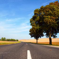 Autumn in France.jpg