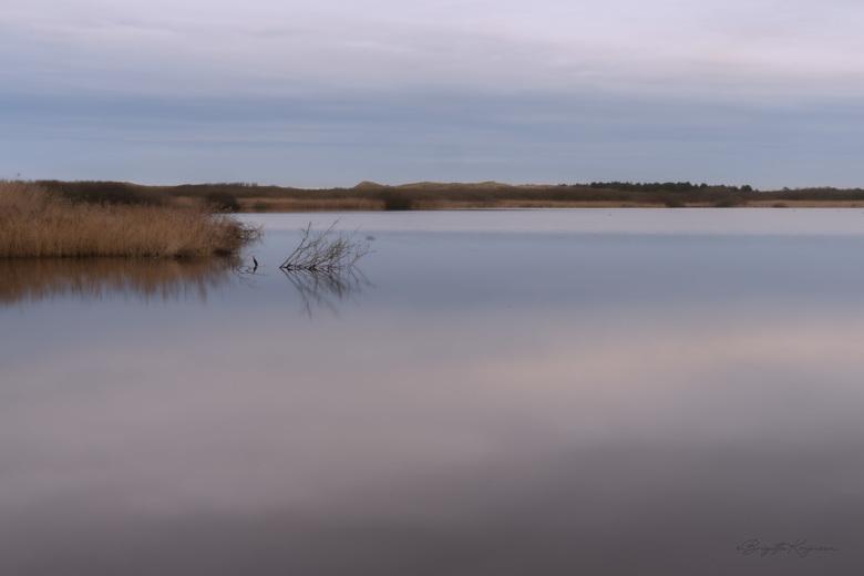 Zwanenwater - Heerlijk een groot rondje Zwanenwater gelopen, deze vanuit een vogelhut gemaakt met lange sluitertijd.