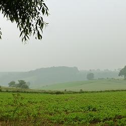 mistig heuvel landschap