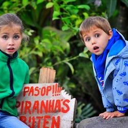 Piranha's bijten echt!!!