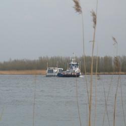 Pont naar Werkendam