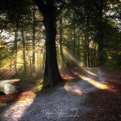Path of light...