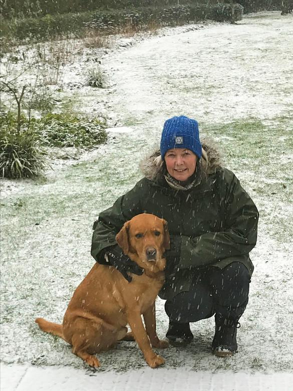 Buddy - Even wennen, die sneeuwvlokjes!