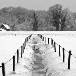 Winterlandschap 2010 - 2