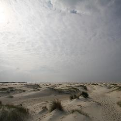 Texel de Hors