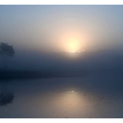 Een ochtend op de Kampina