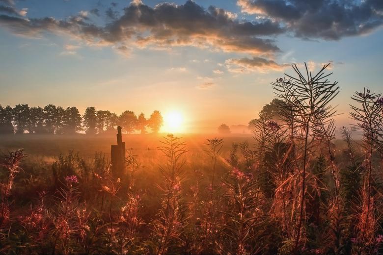 Mooie, nevelachtige zonsopkomst  - 01-08-2018: Mooie, nevelachtige zonsopkomst in Hertme, Overijssel.