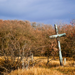 A Lonely Cross