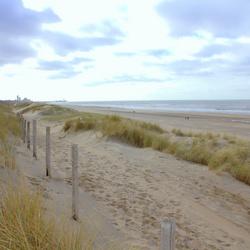 Scheveningen Duin en strand