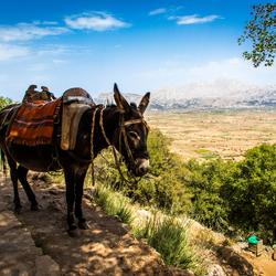 Ezel @ Dikti, Kreta