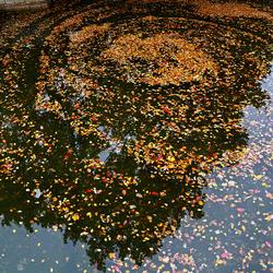Herfstkleuren op het water