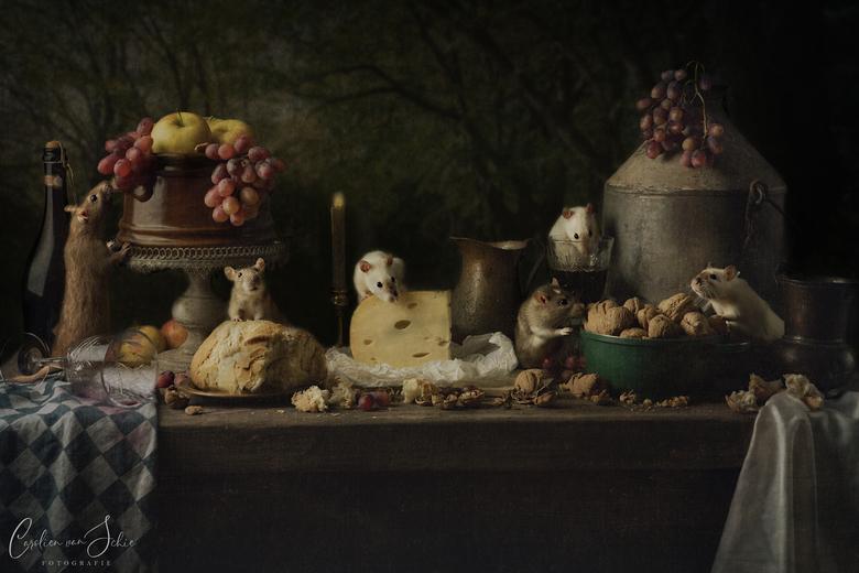"""Als de kat van huis is..... - Dan dansen in dit geval de ratten! <img  src=""""/images/smileys/wilt.png""""/> <br /> <br /> Ik ben al een tijdje bezig met"""