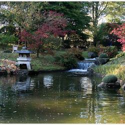 Herfst in de Japanse Tuin 3