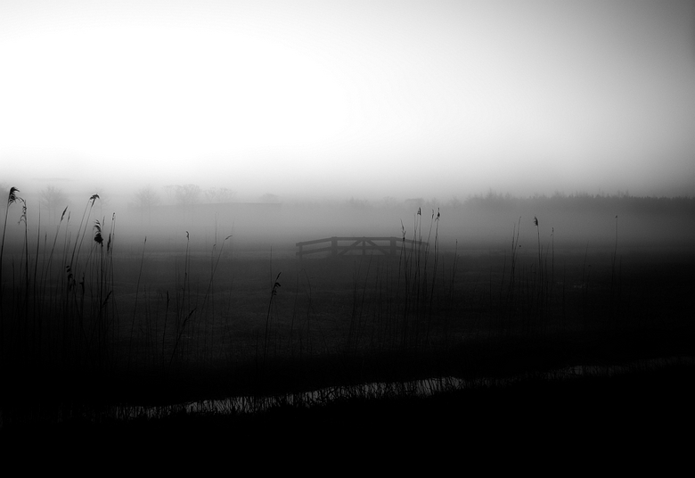 Frlfotografie-1-2.jpg