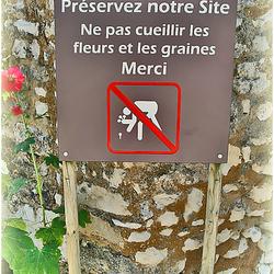 Talmont-sur-Gironde 3