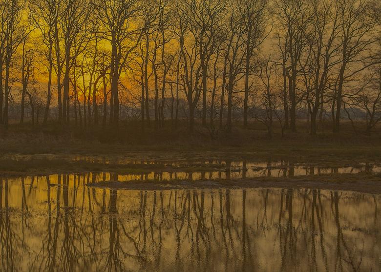 Rustige kleuren in het landschap -