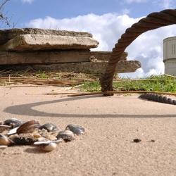 watertoren in beeld vanaf strandje