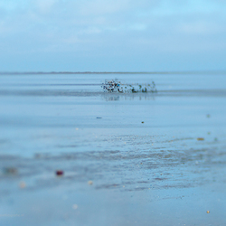 De zee.............