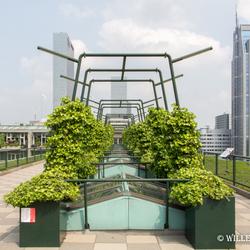Rotterdam vanaf het dak
