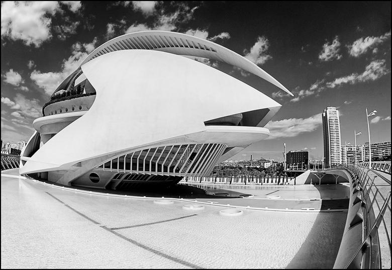 Artistieke architectuur 39 - Toen ik tpv Ciutat de les Arts i les Ciències in Valencia over de brug liep had ik ineens een Free Willy gevoel. Nu hoor