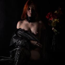 De rode rozen