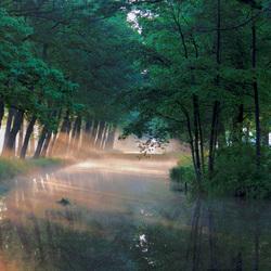 Mist boven een kanaal in Griendtsveen
