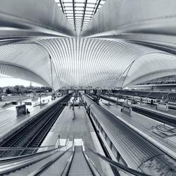 Calatravanism