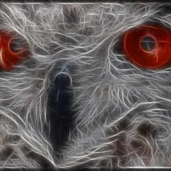 uil fractalius