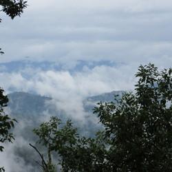 Jungle trip Thailand