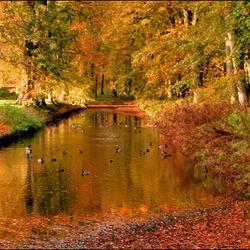 Herfst bij de Menkemaborg