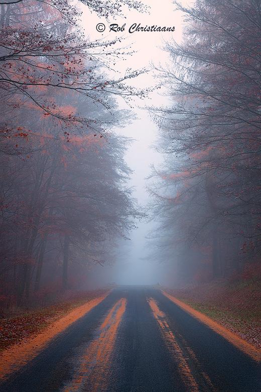 Road to the Unknown - Een koude mistige ochtend in de Eifel, Duitsland. Nog wat laatste herfstkleuren aan de bomen en op de weg, de mist zorgde voor e