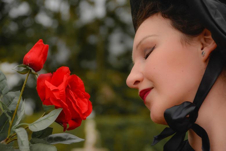 The Rose - In vervoering van een prachtige roos.