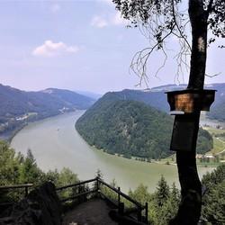 20170622_114951 Beierse Woud nr42 UITZ Donau bij Schlogen 22juni 2017