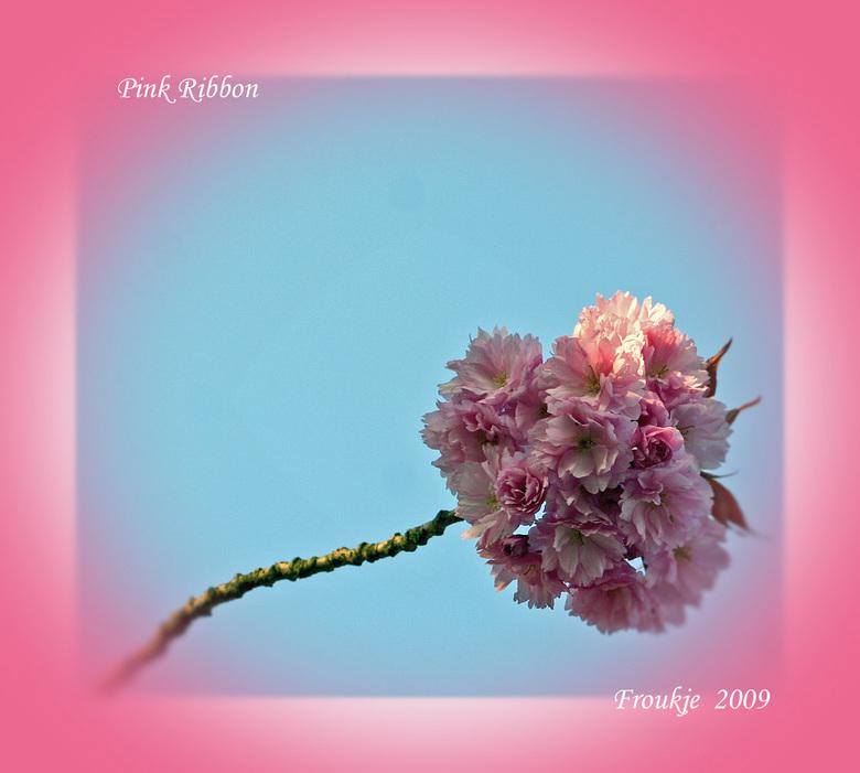 Pink Ribbon - Mijn bijdrage voor het goede doel .<br /> Iedereen bedankt voor de reacties op mijn puppiefoto .<br /> Groetjes Froukje allen een fijn