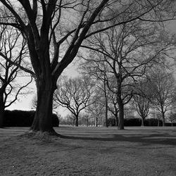 Margraten Amerikaans kerkhof