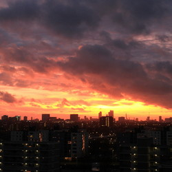 Red Sky over Rotterdam