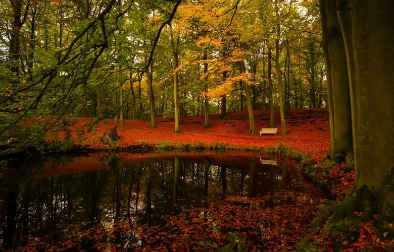 herfst in Clingendael - Herfsttafereel met weerspiegeling in het water.