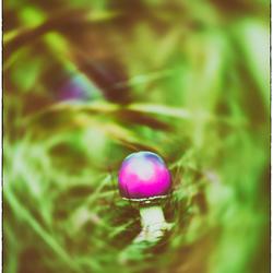 psychedelic easter egg