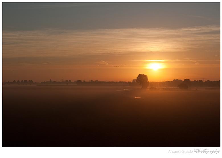 Foggy Shadows  - Deze foto is van 14 oktober toen ik onderweg was voor mijn eerste paddenstoelenfoto's naar Arnhem. Het was dikke mist maar de zo