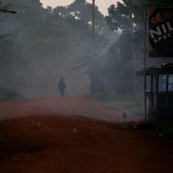 Morning mist Uganda