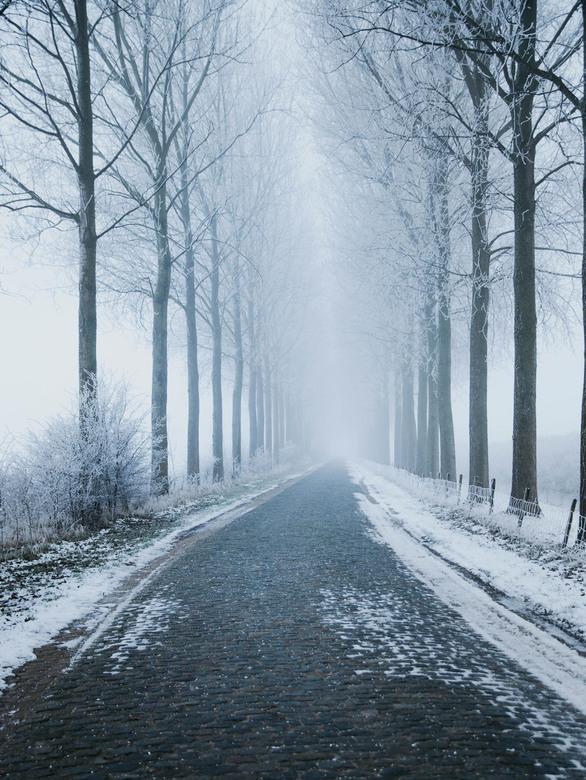 Frozen friday -